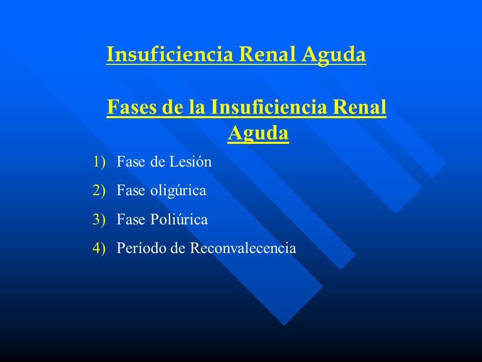 Insuficiencia Renal Aguda Fases de la Insuficiencia Renal Aguda
