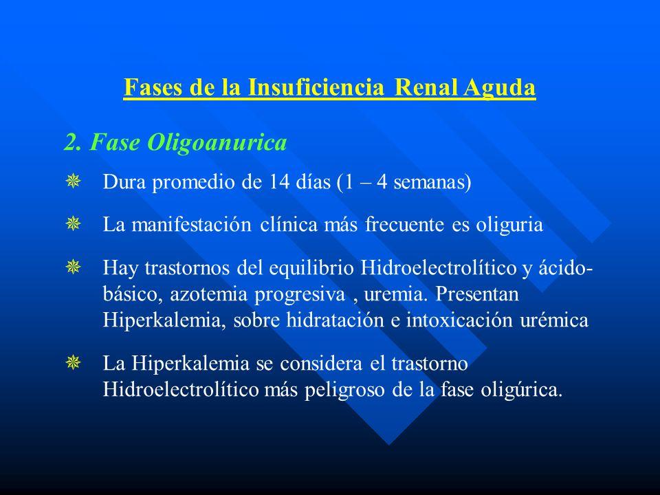 Fases de la Insuficiencia Renal Aguda