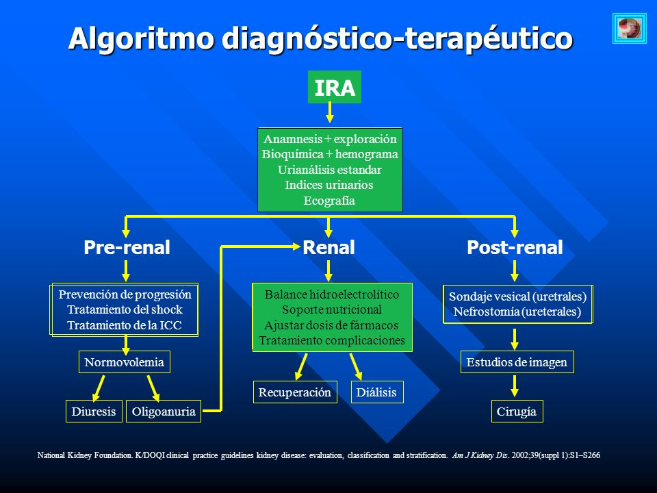 Algoritmo diagnóstico-terapéutico