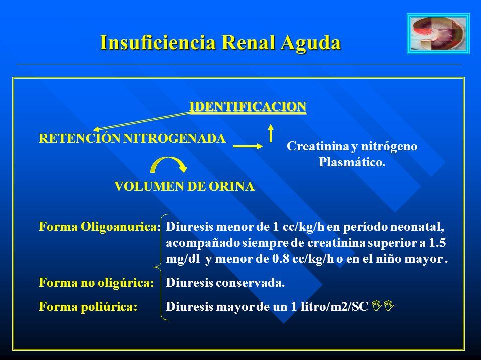 Insuficiencia Renal Aguda Creatinina y nitrógeno Plasmático.