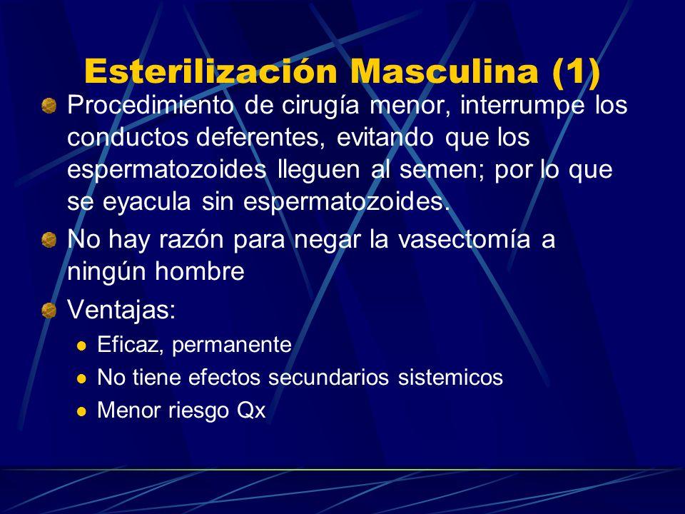 Esterilización Masculina (1)