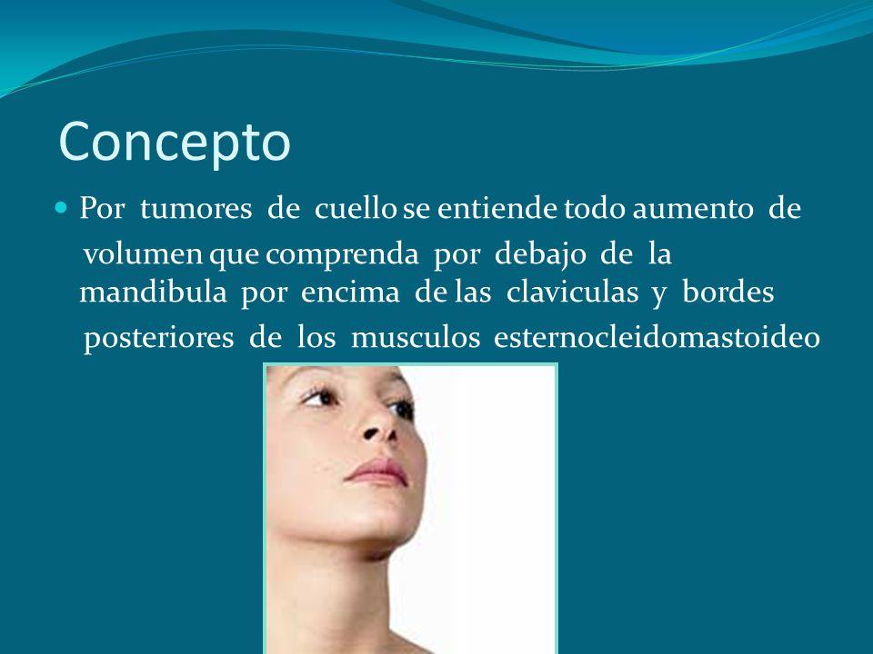 Concepto Por tumores de cuello se entiende todo aumento de