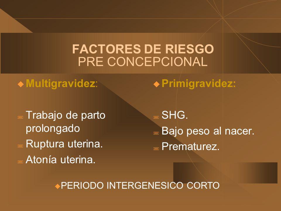 FACTORES DE RIESGO PRE CONCEPCIONAL