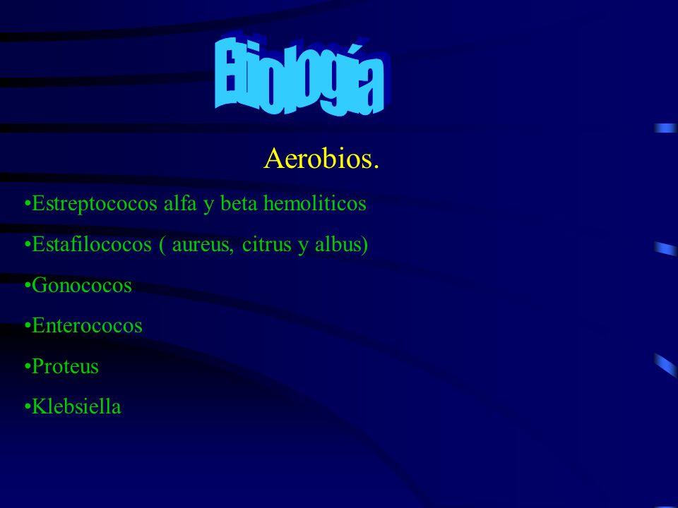 Etiología Aerobios. Estreptococos alfa y beta hemoliticos