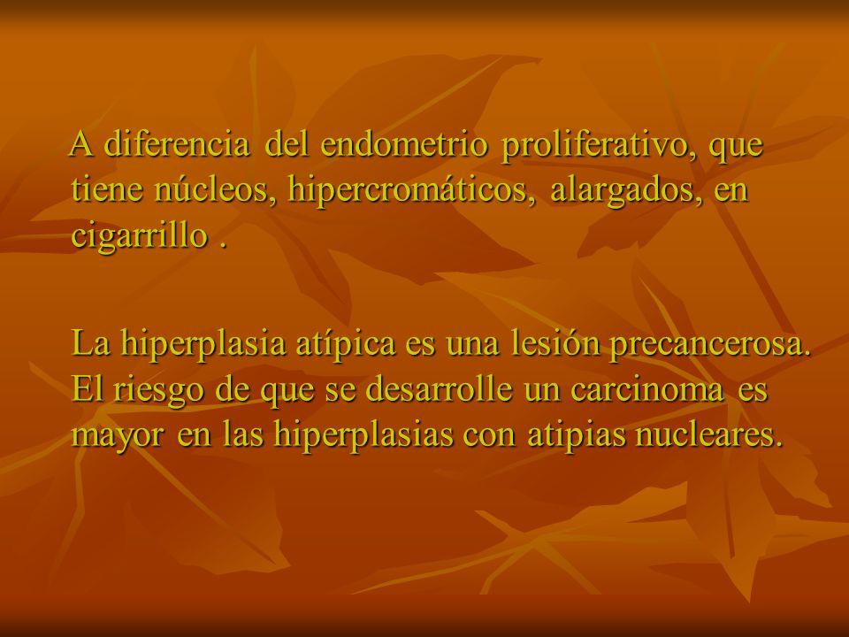 A diferencia del endometrio proliferativo, que tiene núcleos, hipercromáticos, alargados, en cigarrillo .