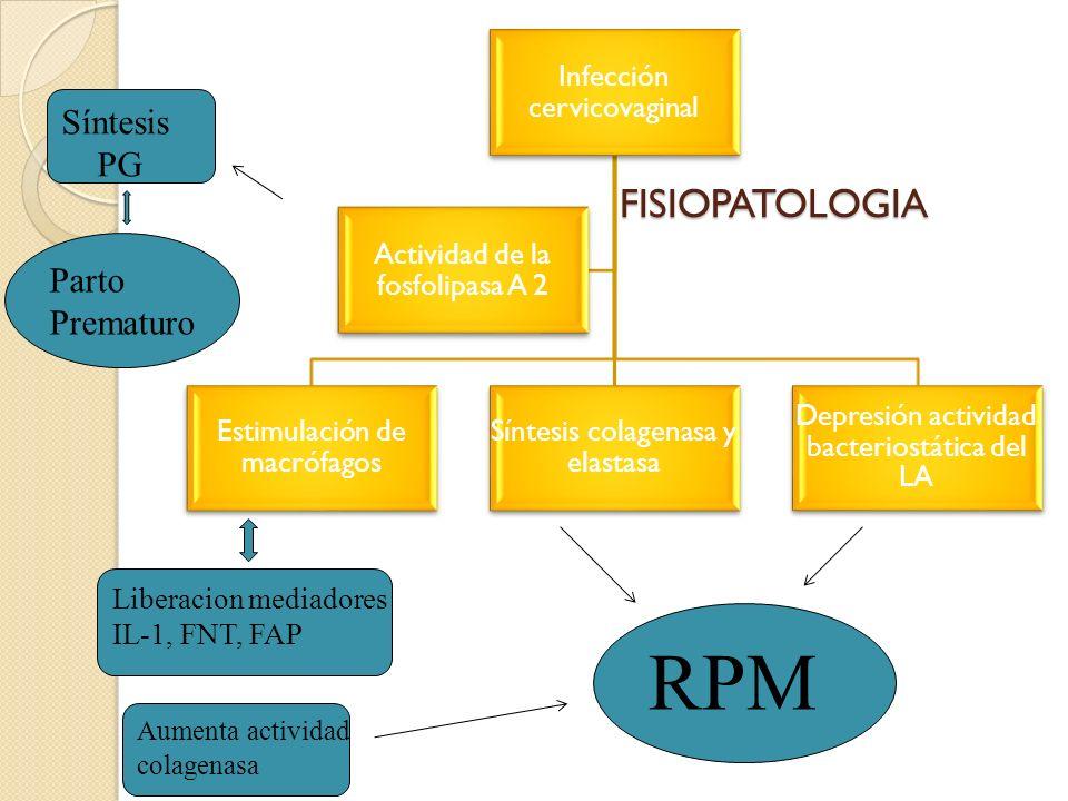 RPM FISIOPATOLOGIA Síntesis PG Parto Prematuro Liberacion mediadores
