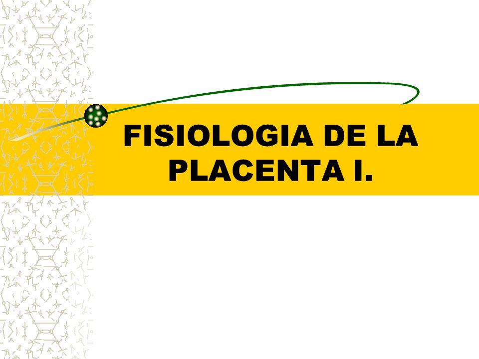 FISIOLOGIA DE LA PLACENTA I.