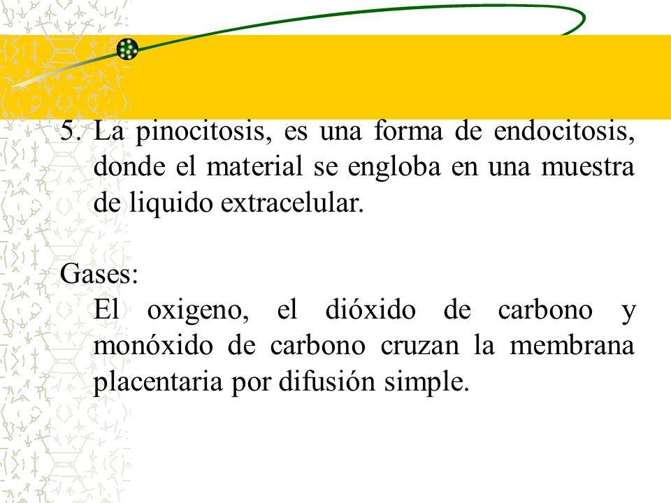 La pinocitosis, es una forma de endocitosis, donde el material se engloba en una muestra de liquido extracelular.