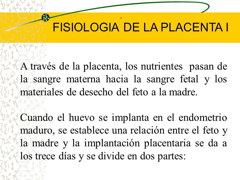 FISIOLOGIA DE LA PLACENTA I