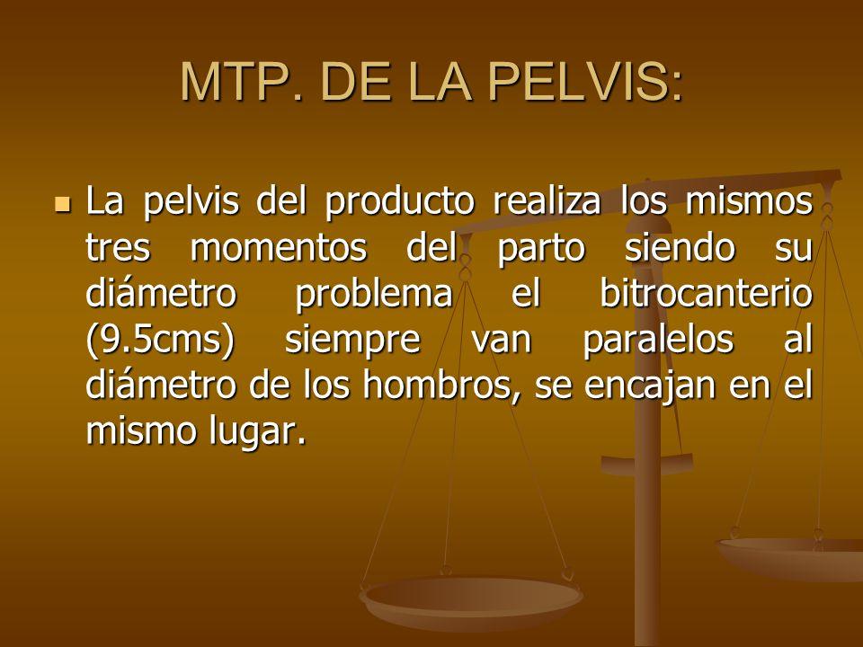 MTP. DE LA PELVIS:
