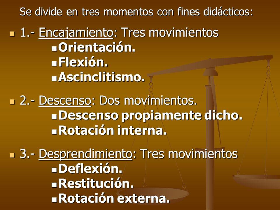 1.- Encajamiento: Tres movimientos Orientación. Flexión.