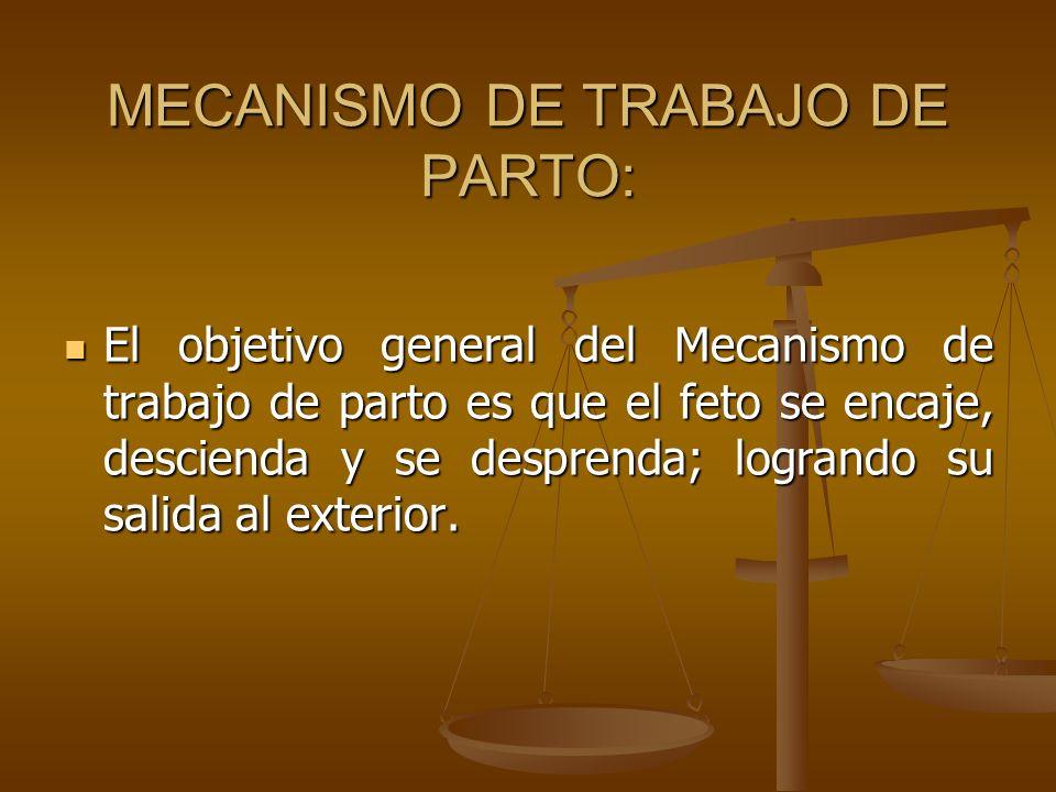 MECANISMO DE TRABAJO DE PARTO: