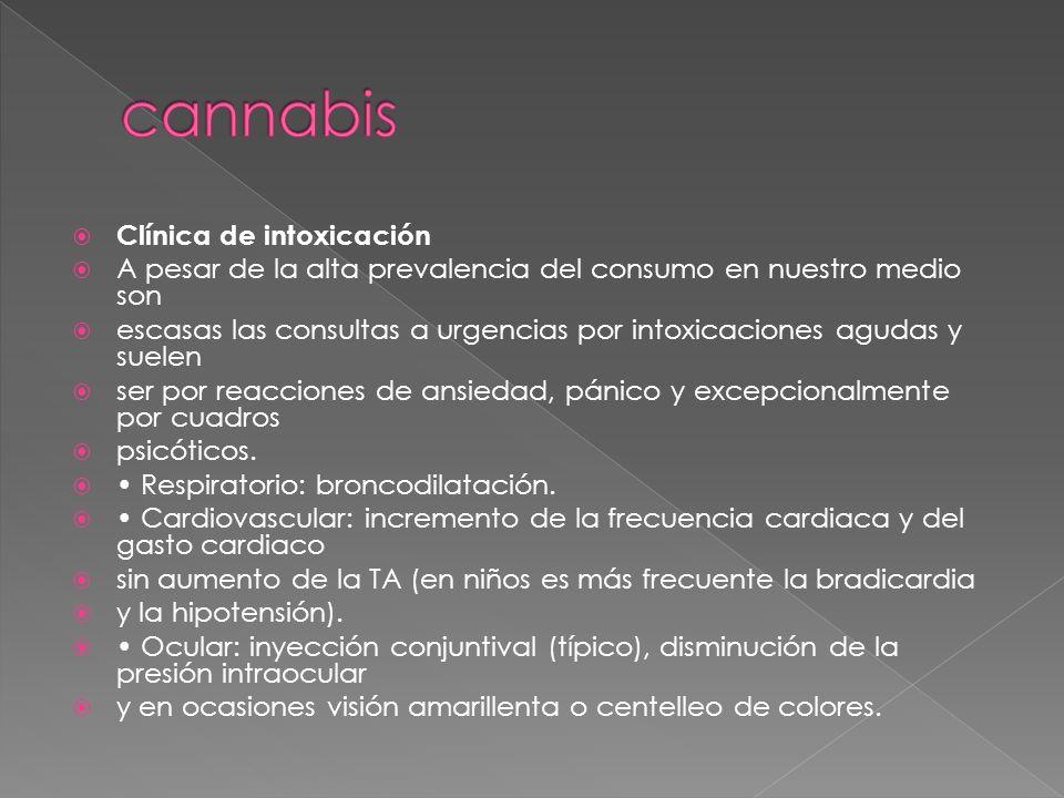 cannabis Clínica de intoxicación