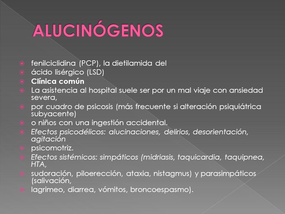 ALUCINÓGENOS fenilciclidina (PCP), la dietilamida del