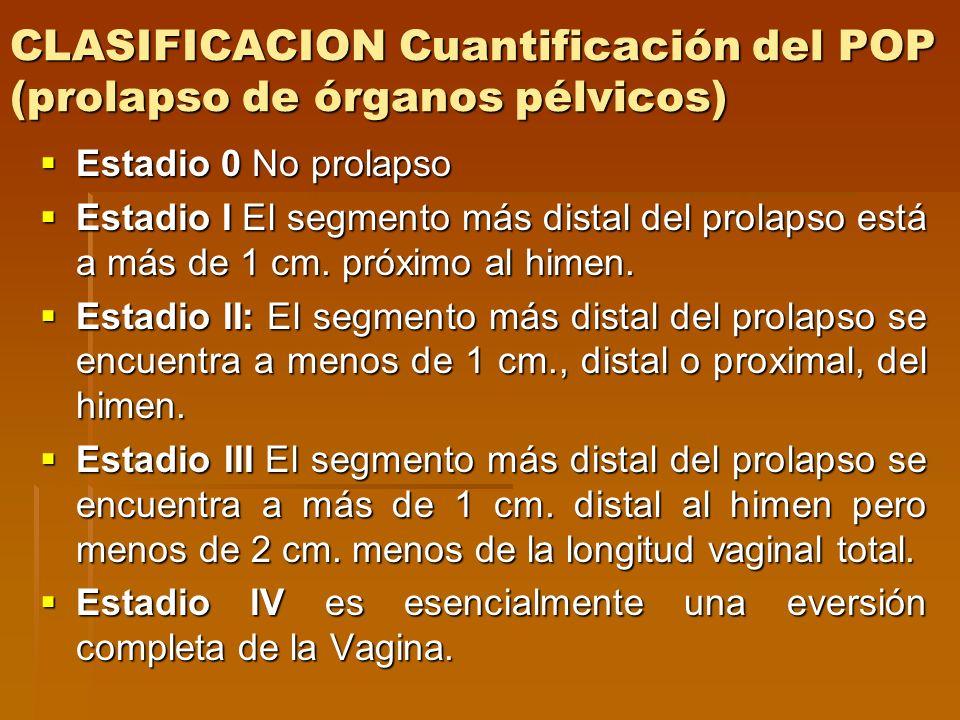 CLASIFICACION Cuantificación del POP (prolapso de órganos pélvicos)