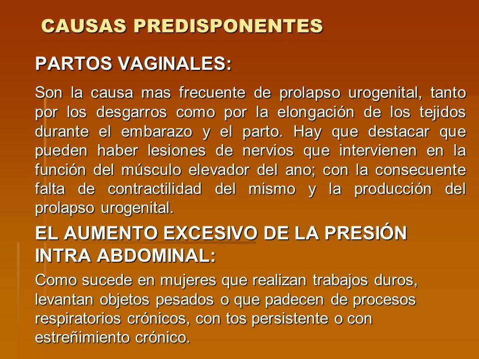 CAUSAS PREDISPONENTES