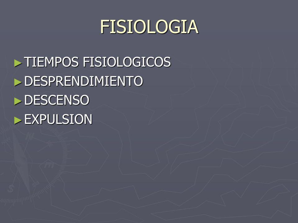 FISIOLOGIA TIEMPOS FISIOLOGICOS DESPRENDIMIENTO DESCENSO EXPULSION
