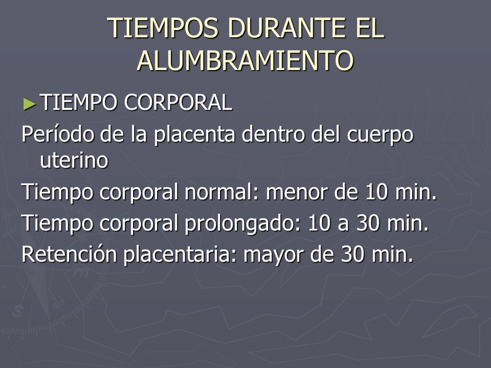 TIEMPOS DURANTE EL ALUMBRAMIENTO