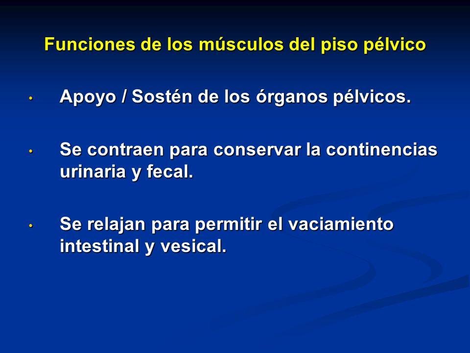 Funciones de los músculos del piso pélvico