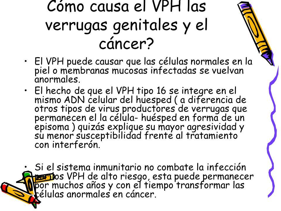 Cómo causa el VPH las verrugas genitales y el cáncer