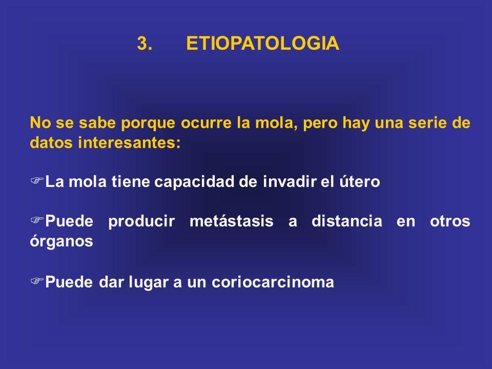 3. ETIOPATOLOGIA No se sabe porque ocurre la mola, pero hay una serie de datos interesantes: La mola tiene capacidad de invadir el útero.