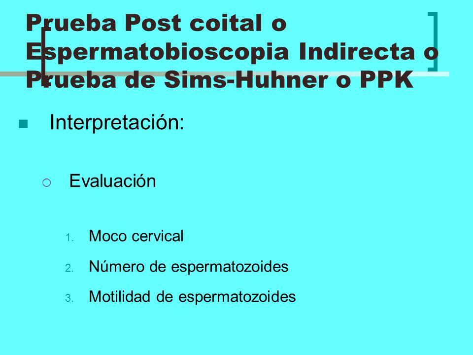 Prueba Post coital o Espermatobioscopia Indirecta o Prueba de Sims-Huhner o PPK
