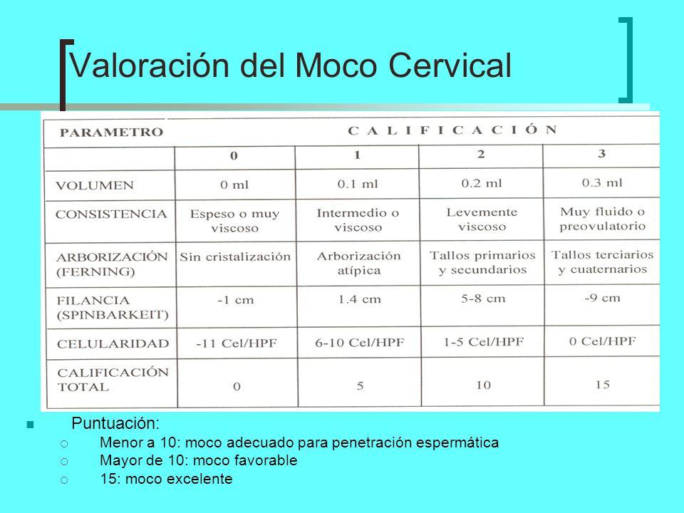 Valoración del Moco Cervical
