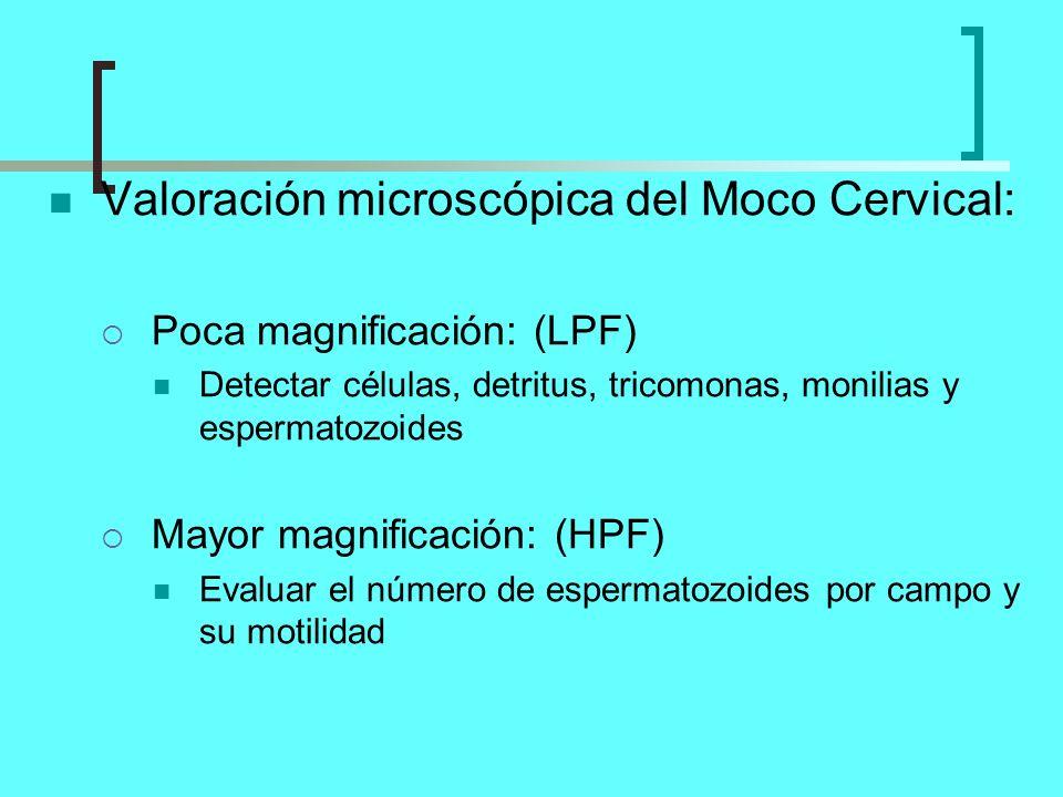 Valoración microscópica del Moco Cervical: