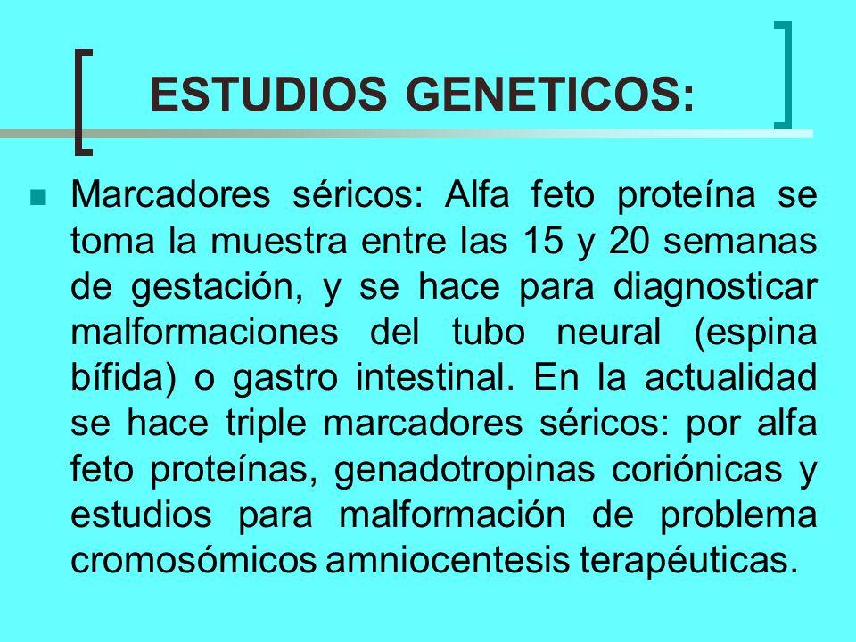 ESTUDIOS GENETICOS: