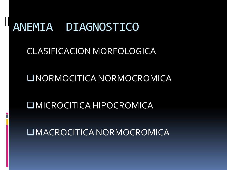 ANEMIA DIAGNOSTICO CLASIFICACION MORFOLOGICA NORMOCITICA NORMOCROMICA