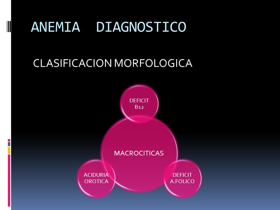 ANEMIA DIAGNOSTICO CLASIFICACION MORFOLOGICA MACROCITICAS DEFICIT B12