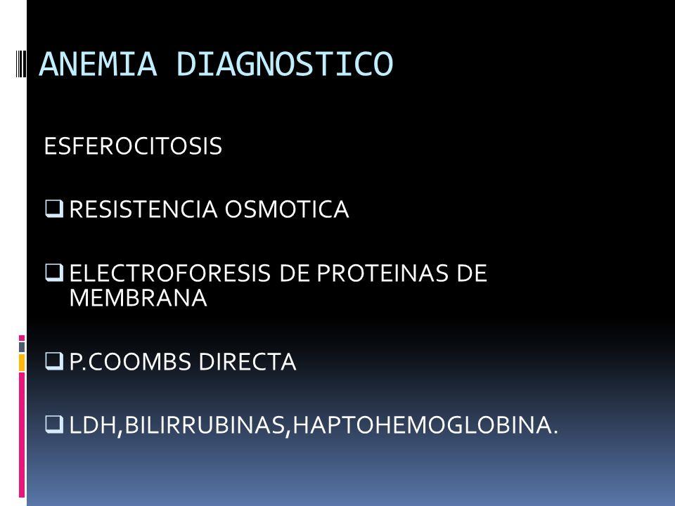ANEMIA DIAGNOSTICO ESFEROCITOSIS RESISTENCIA OSMOTICA