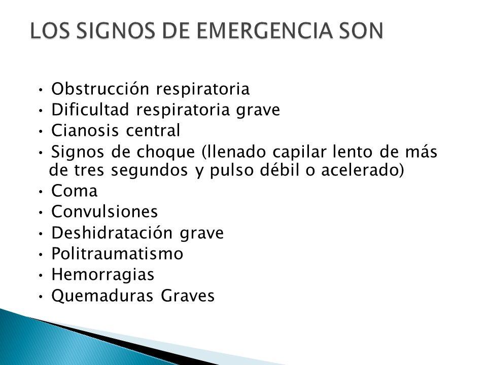 LOS SIGNOS DE EMERGENCIA SON