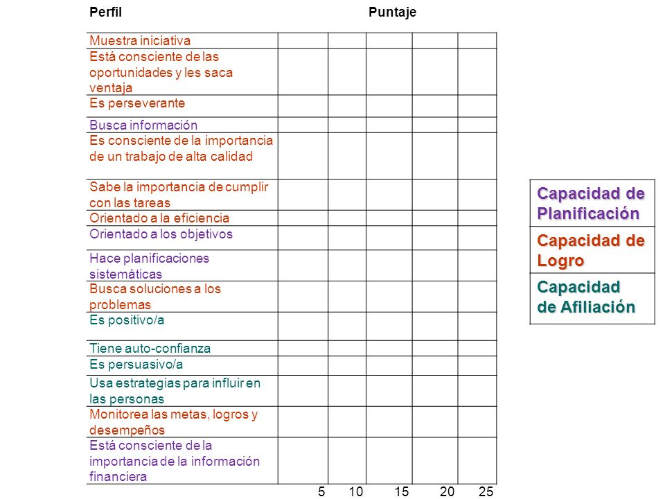 Capacidad de Planificación Capacidad de Logro Capacidad de Afiliación