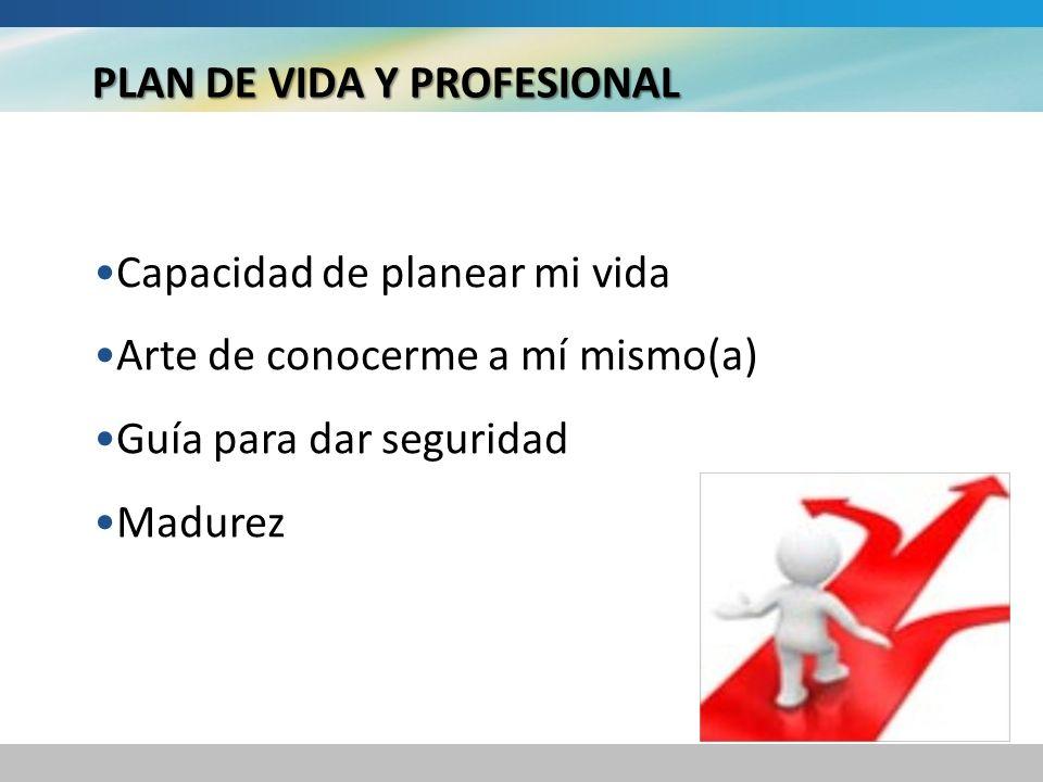 PLAN DE VIDA Y PROFESIONAL