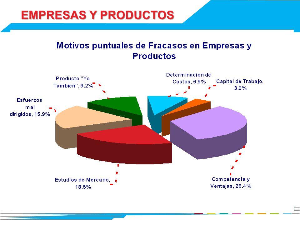 EMPRESAS Y PRODUCTOS 13
