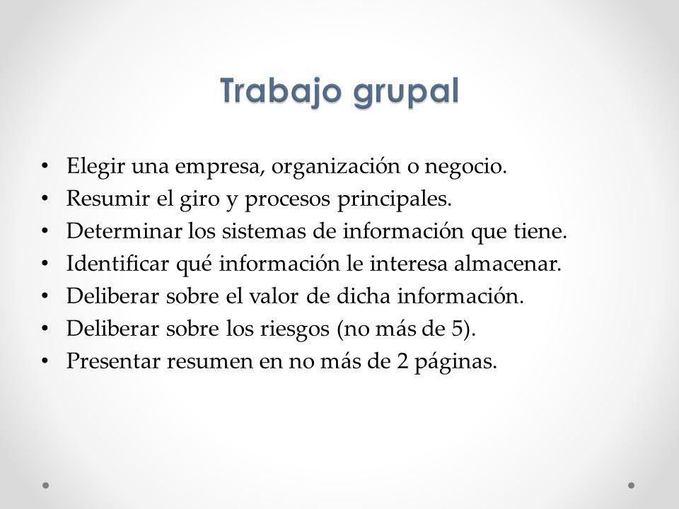 Trabajo grupal Elegir una empresa, organización o negocio.