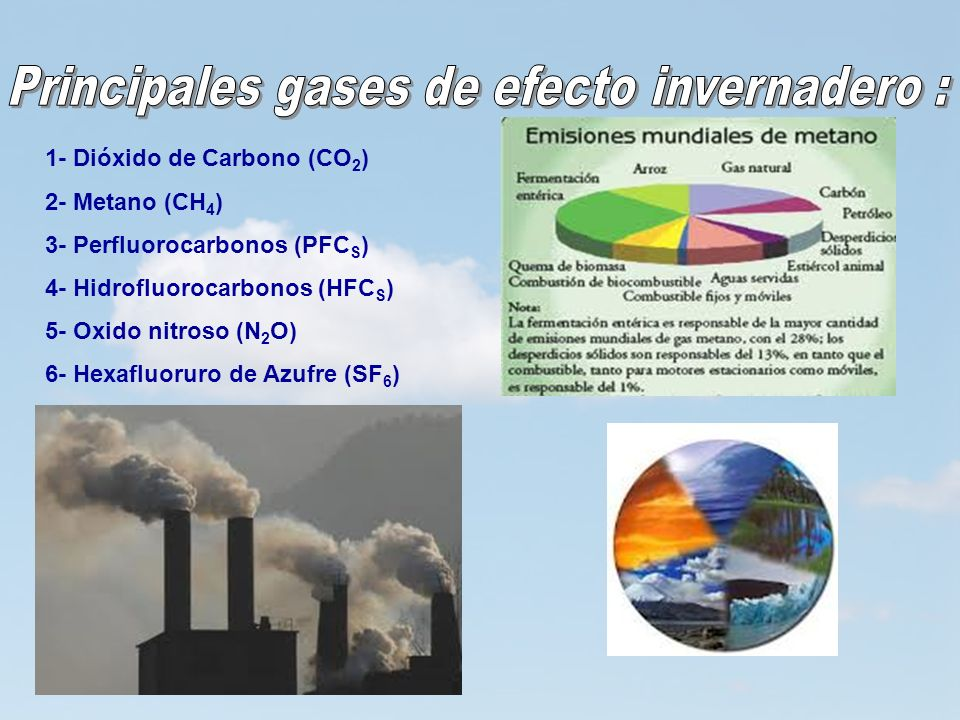 Principales gases de efecto invernadero :
