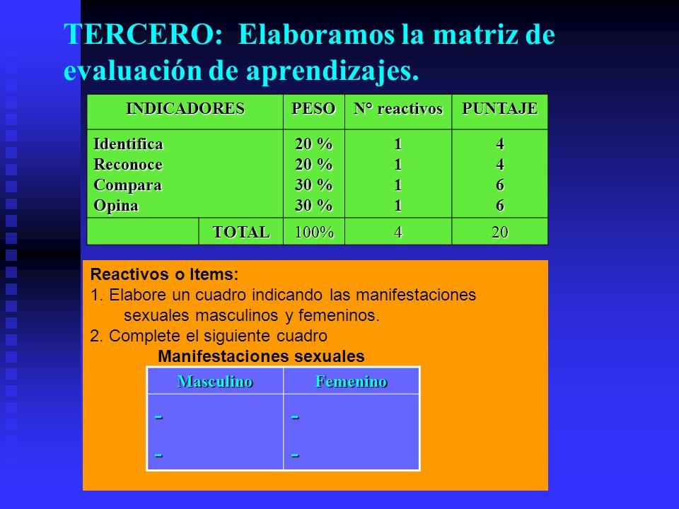 TERCERO: Elaboramos la matriz de evaluación de aprendizajes.