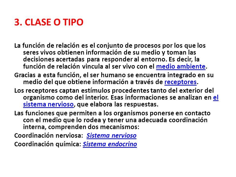 3. CLASE O TIPO