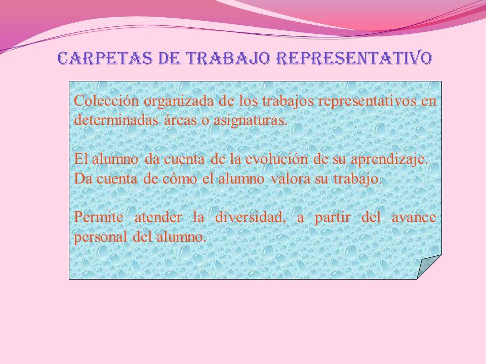 CARPETAS DE TRABAJO REPRESENTATIVO