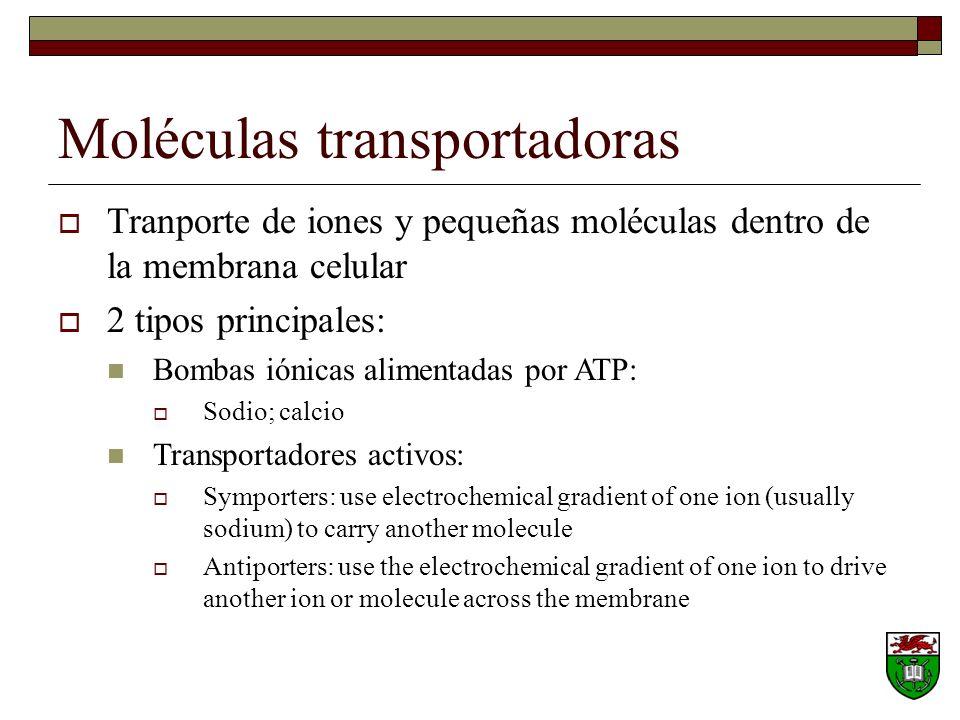Moléculas transportadoras