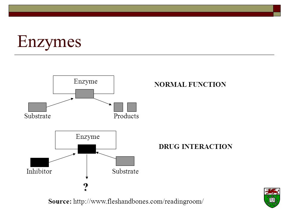 Enzymes Enzyme NORMAL FUNCTION Substrate Products Enzyme