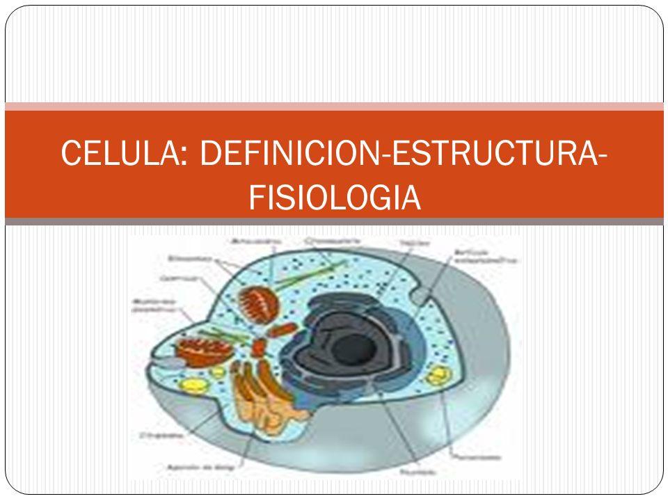 CELULA: DEFINICION-ESTRUCTURA-FISIOLOGIA