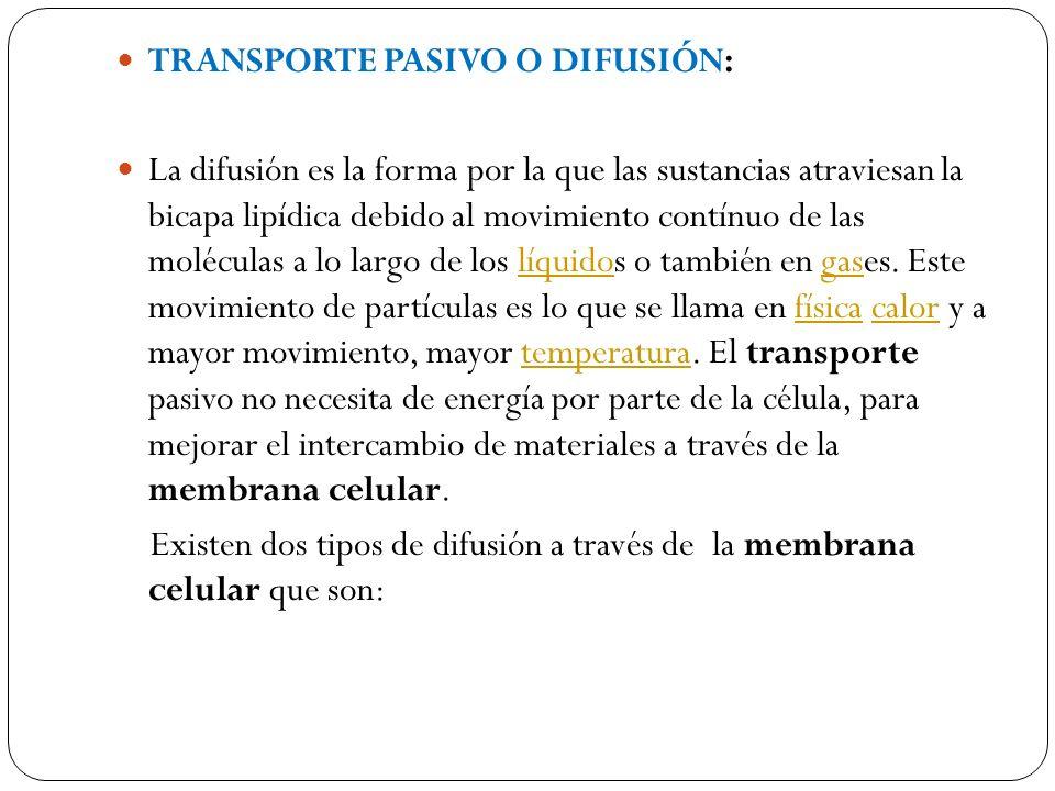 TRANSPORTE PASIVO O DIFUSIÓN: