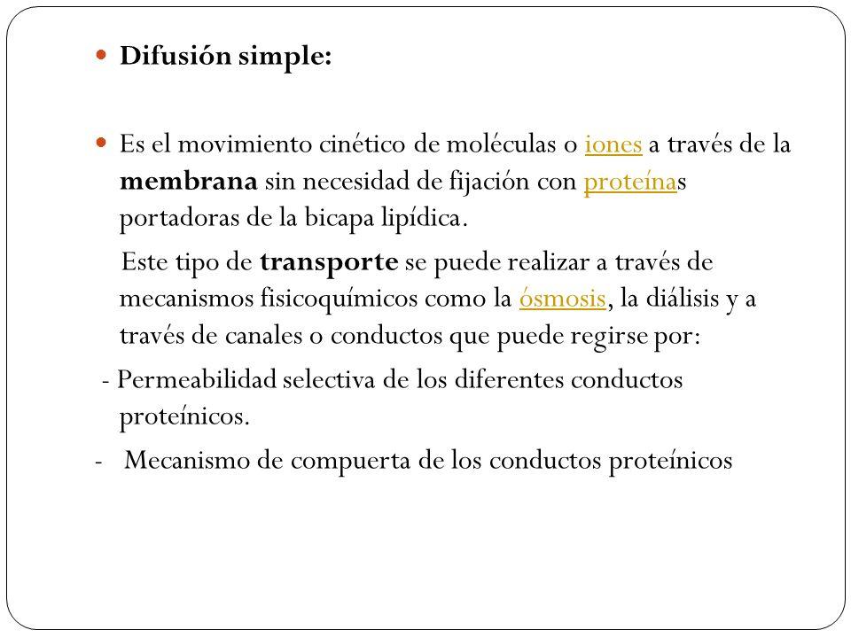 Difusión simple: