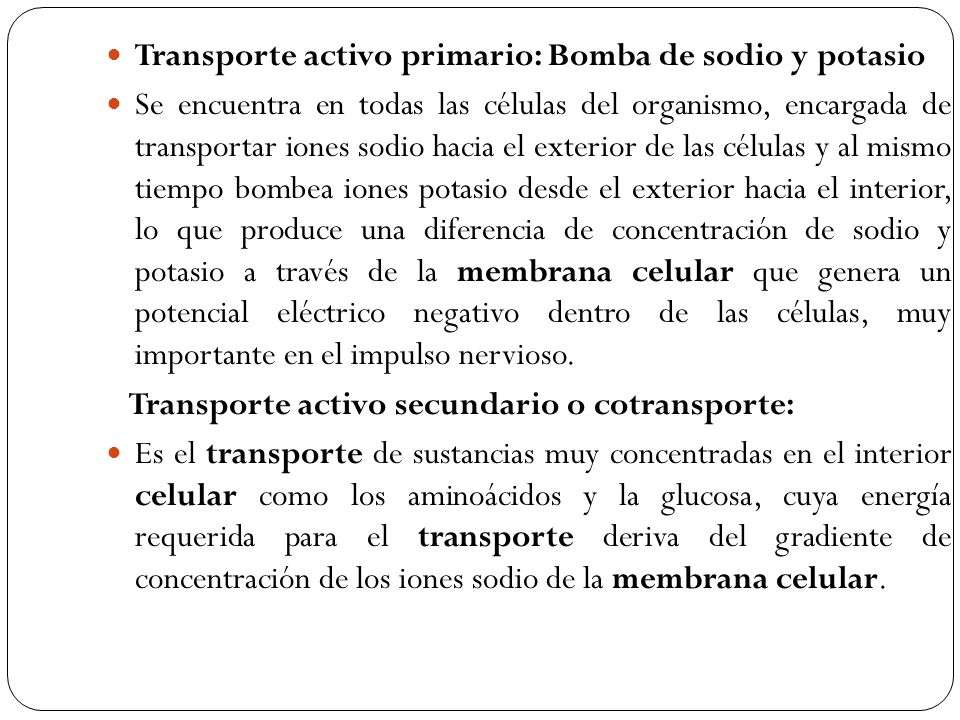 Transporte activo primario: Bomba de sodio y potasio