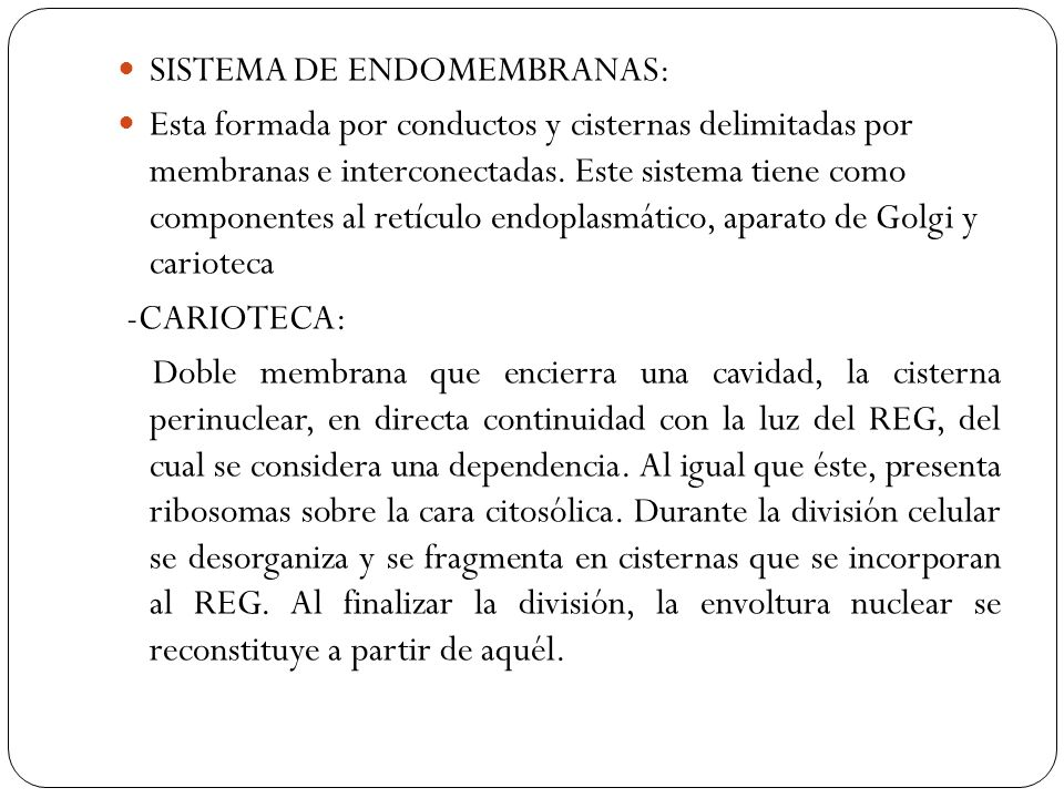 SISTEMA DE ENDOMEMBRANAS: