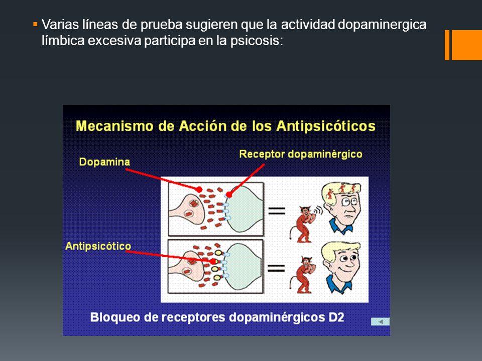 Varias líneas de prueba sugieren que la actividad dopaminergica límbica excesiva participa en la psicosis: