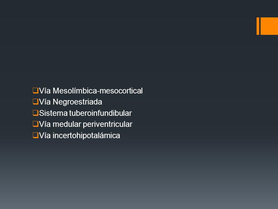 Vía Mesolímbica-mesocortical